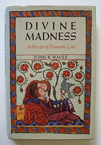 9780877734833: Divine Madness