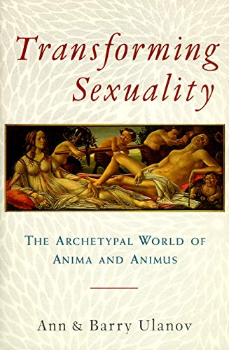 9780877739869: Transforming Sexuality: The Archetypal World of Anima and Animus