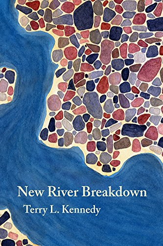 9780877759003: New River Breakdown