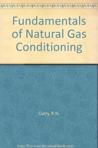 9780878141623: Fundamentals of Natural Gas Conditioning