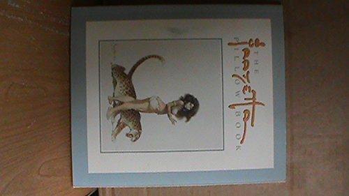 9780878162536: Frazetta Pillow Book