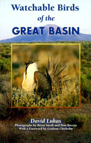 Watchable Birds of the Great Basin: David Lukas