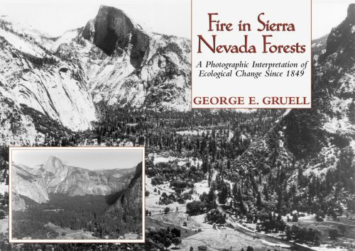 9780878424467: Fire in Sierra Nevada Forests: A Photographic Interpretation of Ecological Change Since 1849