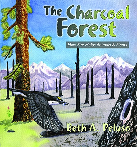 The Charcoal Forest: How Fire Helps Animals & Plants: Beth A. Peluso