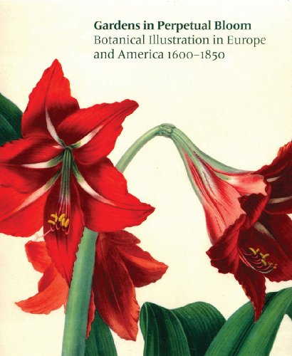 9780878467495: Gardens in Perpetual Bloom: Botanical Illustration in Europe and America 1600-1850