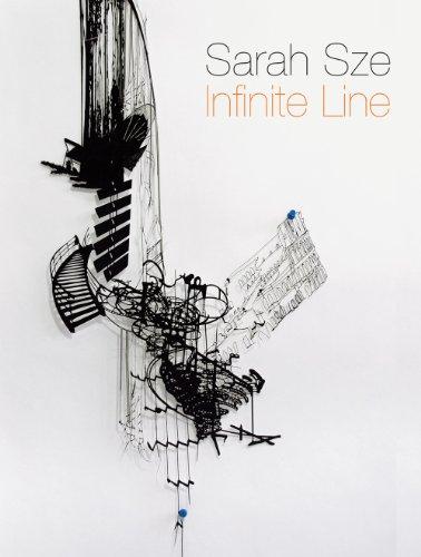 9780878481132: Sarah Sze: Infinite Line