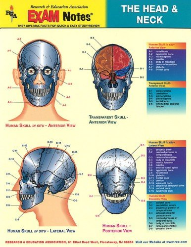 9780878912391: Head & Neck Anatomy Exam Notes