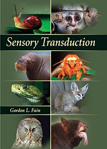 9780878931712: Sensory Transduction