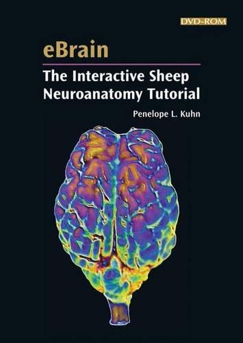 9780878933808: eBrain: The Interactive Sheep Neuroanatomy Tutorial