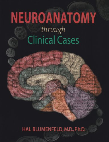 9780878933822: Neuroanatomy Through Clinical Cases 2nd Ed + Neuroscience 4th Ed