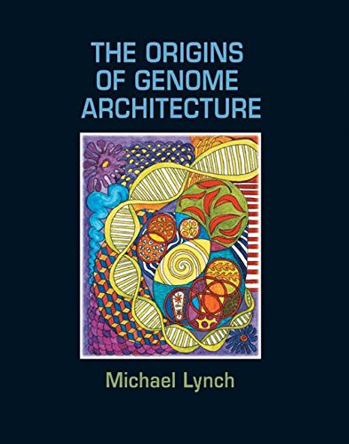 9780878934843: The Origins of Genome Architecture