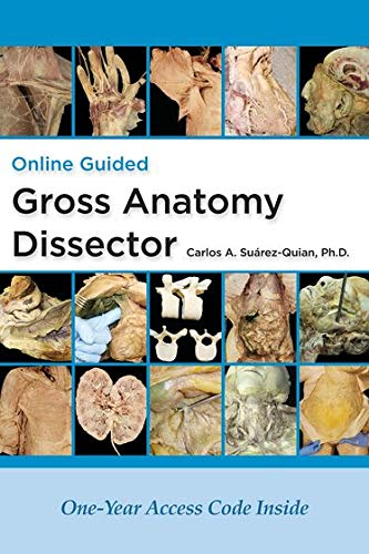 Online Guided Gross Anatomy Dissector: Carlos Suarez-Quian