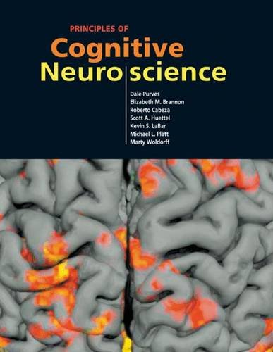9780878936946: Principles of Cognitive Neuroscience