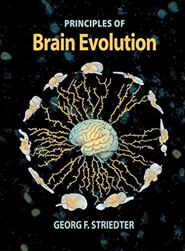 9780878938209: Principles Of Brain Evolution