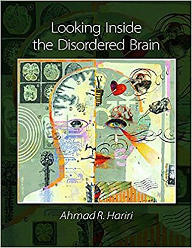9780878939794: Looking Inside the Disordered Brain