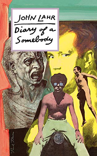 9780879101244: Diary of a Somebody