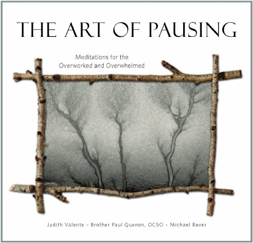 9780879465094: The Art of Pausing