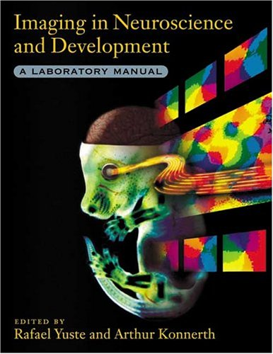 9780879696924: Imaging in Neuroscience and Development: A Laboratory Manual
