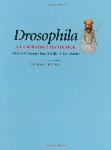 9780879697068: Drosophila: A Laboratory Handbook