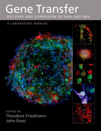 9780879697648: Gene Transfer: Delivery and Expression of DNA and RNA, A Laboratory Manual