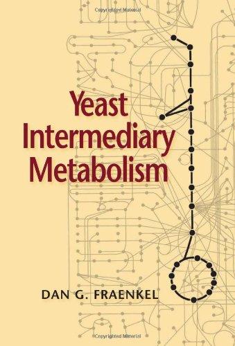 9780879697976: Yeast Intermediary Metabolism