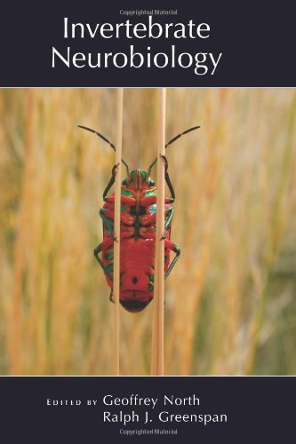 9780879698195: Invertebrate Neurobiology (Cold Spring Harbor Monograph Series)