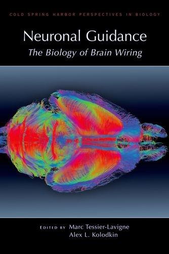 9780879698973: Neuronal Guidance: The Biology of Brain Wiring (Cold Spring Harbor Perspectives in Biology)