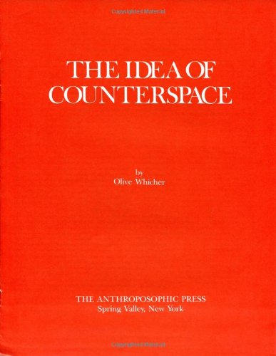 9780880100977: The Idea of Counterspace