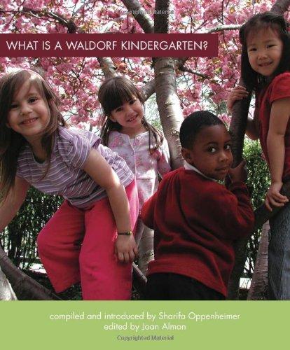9780880105767: What Is a Waldorf Kindergarten?