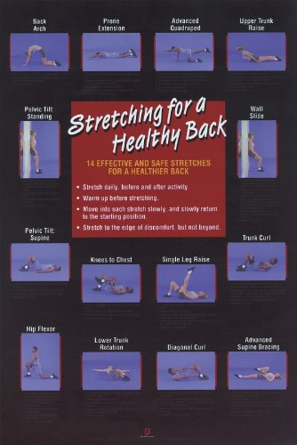 9780880118002: Stretching for a Healthy Back Poster (Flexibility Poster)