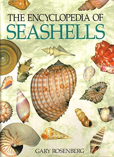 9780880298230: The Encyclopedia of Seashells