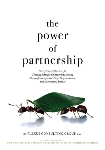 9780880342940: The Power of Partnership: Principles and Practices for Creating Strategic Relationships Among Nonprofit Groups, For-Profit Organizations, and Government Entities