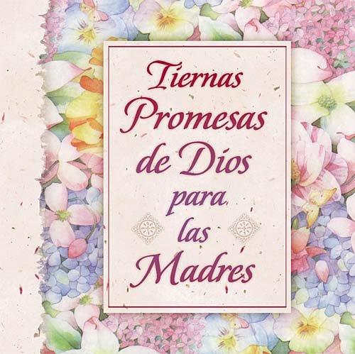 Tiernas Promesas De Dios Para Las Madres (0881136468) by Countryman, Jack