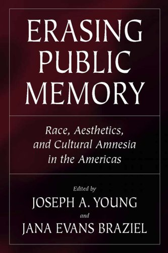 9780881460582: Erasing Public Memory: Race, Aesthetics, and Cultural Amnesia in the Americas (Voices of the African Diaspora)