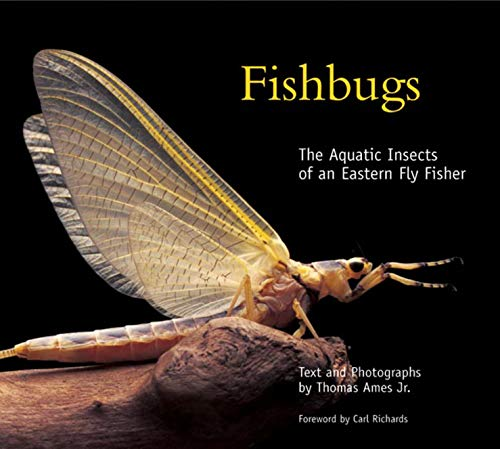9780881506754: Fishbugs: The Aquatic Insects Of An Eastern Flyfisher