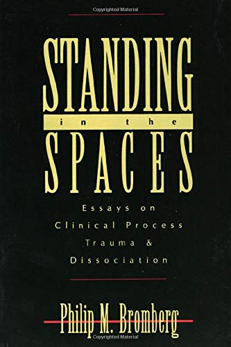 9780881632460: Standing in the Spaces: Essays on Clinical Process Trauma and Dissociation