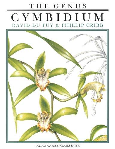 9780881921199: Genus Cymbidium