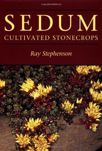 9780881922387: Sedum: Cultivated Stonecrops