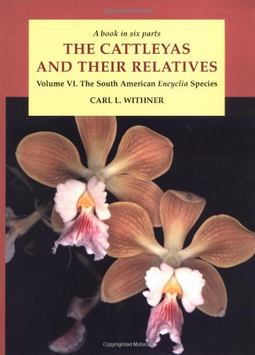 9780881924367: 006: The Cattleyas and Their Relatives, Vol. 6: The South American Encyclia Species