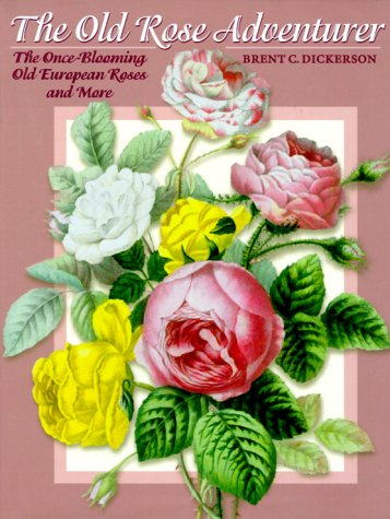 The Old Rose Adventurer The Once-Blooming Old European Roses and More
