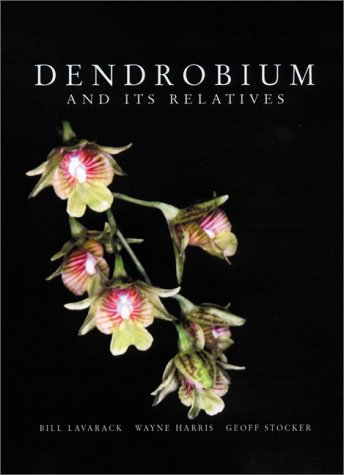 Dendrobium and Its Relatives: Lavarack, Bill; Harris, Wayne; Stocker, Geoff