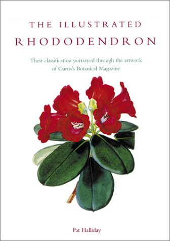 9780881925104: Illustrated Rhododendron: Their Classification Portrayed Through the Artwork of Curtis's Botanical Magazine