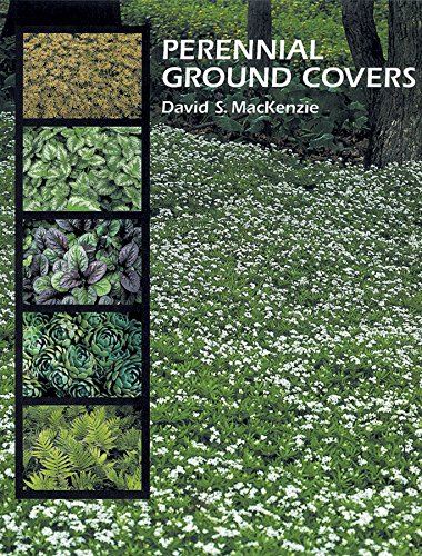 9780881925579: Perennial Ground Covers
