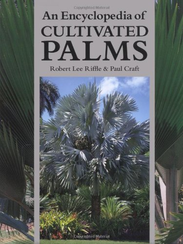 9780881925586: An Encyclopedia of Cultivated Palms
