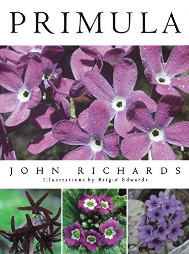 Primula: John Richards