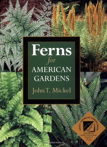 9780881925982: Ferns for American Gardens