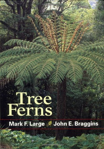Tree Ferns: Mark F. Large;