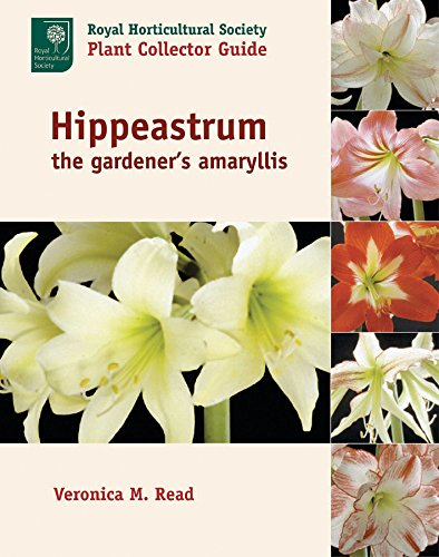 9780881926392: Hippeastrum: The Gardener's Amaryllis (Royal Horticultural Society Plant Collector Guide)