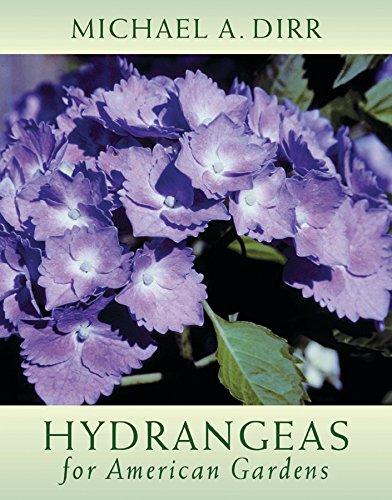 9780881926415: Hydrangeas for American Gardens