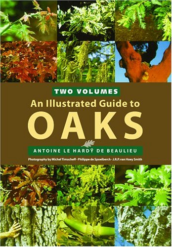9780881926651: An Illustrated Guide To Oaks